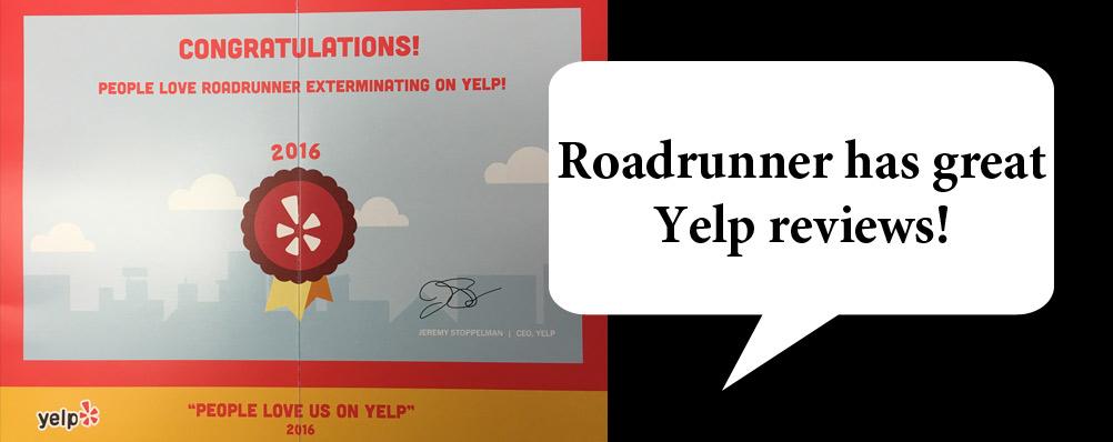 Yelp Reviews!